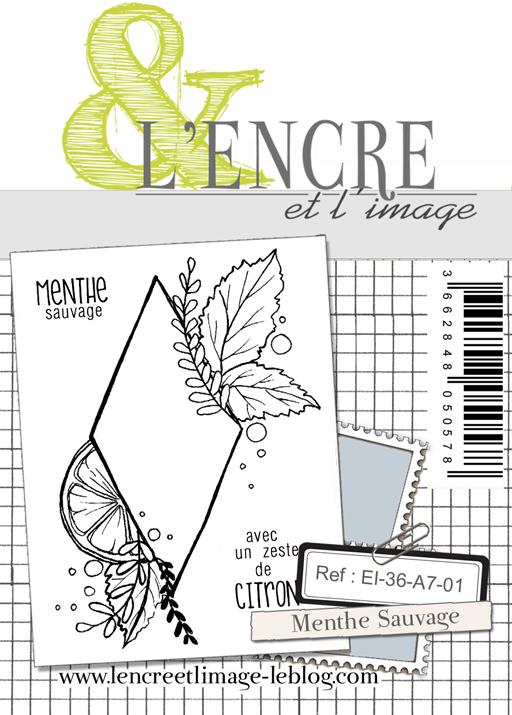 lencreetlimageEI-36-A7-01 Menthe Sauvage