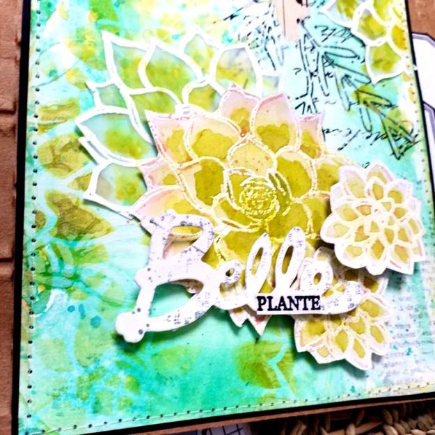 2021_03 Pyjou Carte Belle plante (2)