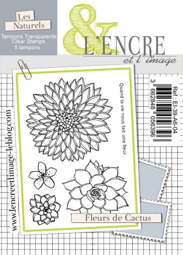 EI-39-A6-04 lencreetlimage Fleurs de cactus